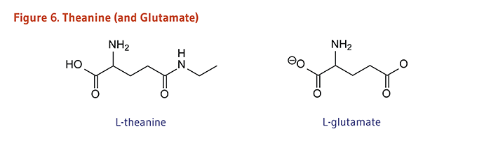 Figure 6. Chemical Structures of Theanine and Glutamate
