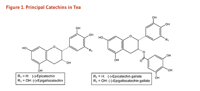 Figure 1. Chemical Structures of the Principal Catechins in Tea: epicatechin, epigallocatechin, epicatechin gallate, and epigallocatechin gallate.