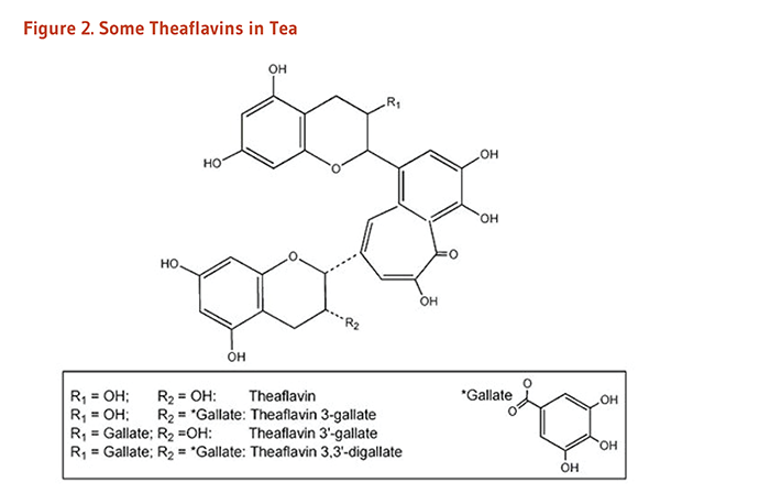 Figure 2. Chemical Structures of Some Theaflavins in Tea: theaflavin, theaflavin 3-gallate, theaflavin 3'-gallate, theaflavin 3,3'-digallate.