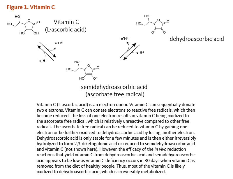 Figure 1. Vitamin C. Vitamin C (L-ascorbic acid) is an electron donor. Vitamin C can sequentially donate two electrons. Vitamin C can donate electrons to reactive free radicals, which then become reduced. The loss of one electron results in vitamin C being oxidized to the ascorbate free radical, which is relatively unreactive compared to other free radicals. The ascorbate free radical can be reduced to vitamin C by gaining one electron or be further oxidized to dehydroascorbic acid by losing another electron. Dehydroascorbic acid is only stable for a few minutes and is then either irreversibly hydrolyzed to form 2,3-diketogulonic acid or reduced to semidehydroascorbic acid and vitamin C (not shown here). However, the efficacy of the in vivo reduction reactions that yield vitamin C from dehydroascorbic acid and semidehydroascorbic acid appears to be low as vitamin C deficiency occurs in 30 days when vitamin C is removed from the diet of healthy people. Thus, most of the vitamin C is likely oxidized to dehydroascorbic acid, which is irreversibly metabolized.