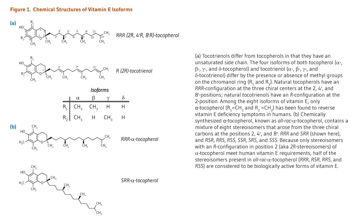 Vitamin E | Linus Pauling Institute | Oregon State University