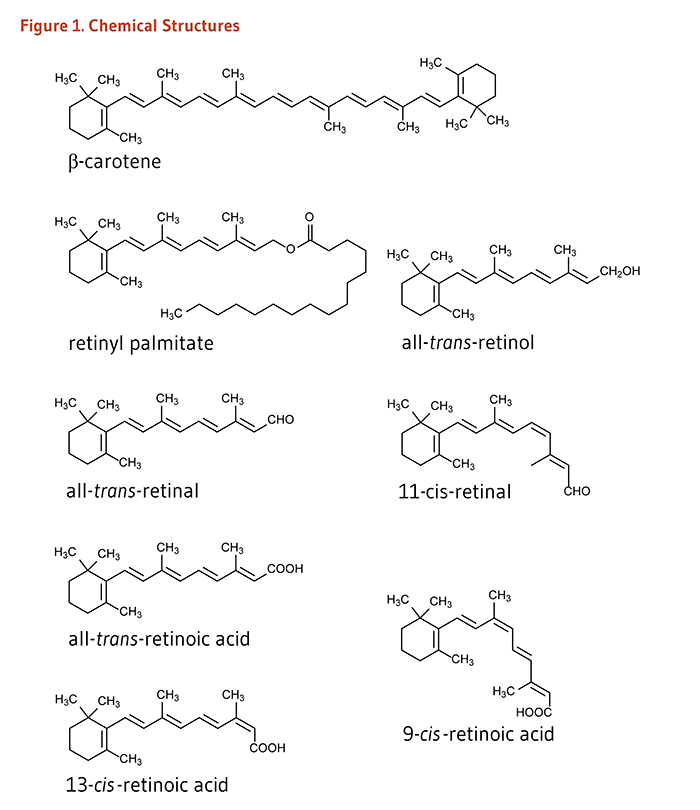 Figure 1. Chemical structures of beta-carotene, retinyl palmitate, all-trans-retinol, all-trans-retinal, 11-cis-retinal, all-trans-retinoic acid, 12-cis-retinoic acid, and 9-cis-retinoic acid.