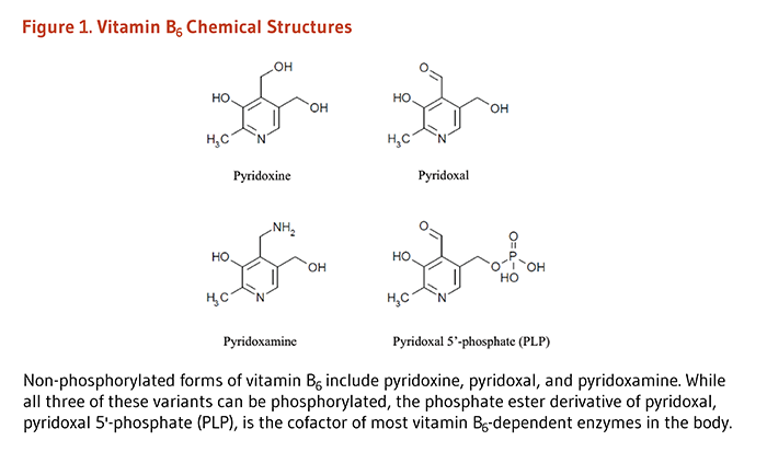 Figure 1. Chemical Structures of pyridoxine, pyridoxal, pyridoxamine, and pyridoxal 5'-phosphate (PLP). Non-phosphorylated forms of vitamin B6 include pyridoxine, pyridoxal, and pyridoxamine. While all three of these variants can be phosphorylated, the phosphate ester derivative of pyridoxal, pyridoxal 5'-phosphate (PLP), is the cofactor of most vitamin B6-dependent enzymes in the body.